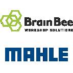 BrainBee MAHLE
